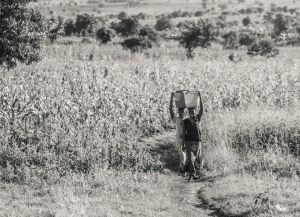 Africa-by-Martin-Szabo-6.jpg